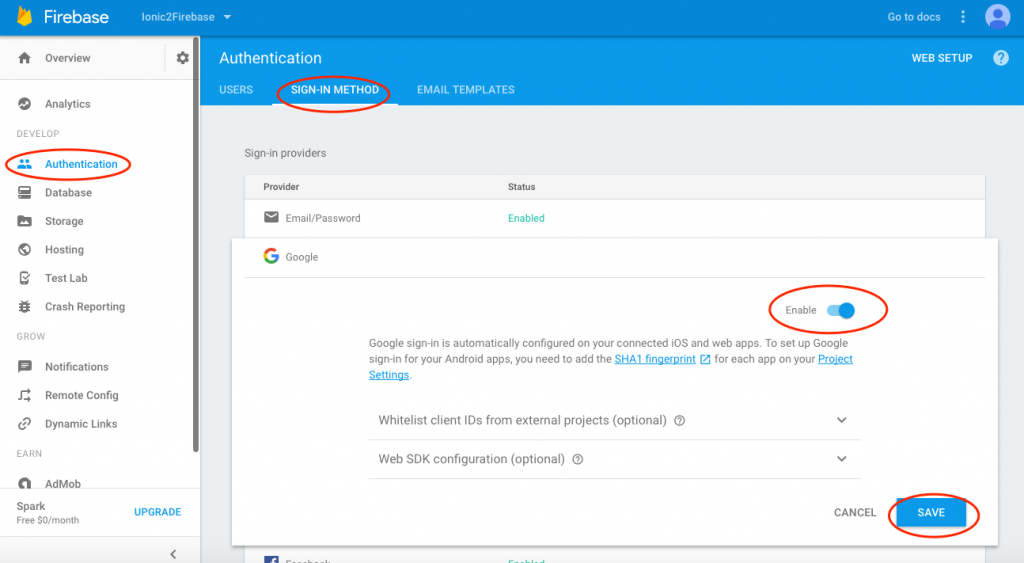 Firebase enable Google sign-in